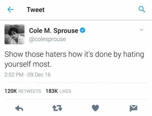 tweet-cole-m-sprouse-atcolesprouse-show-those-haters-how-its-done-by-hating-yourself-most-252-pm-09-dec-16-120k-retweets-183k-likes-58r7a.jpg